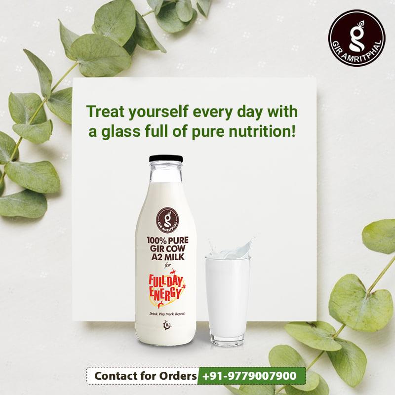 Real Natural farm fresh cow milk in Gurgaon